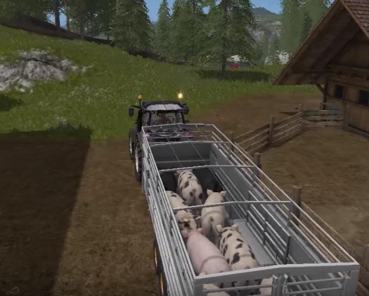 farmy_17