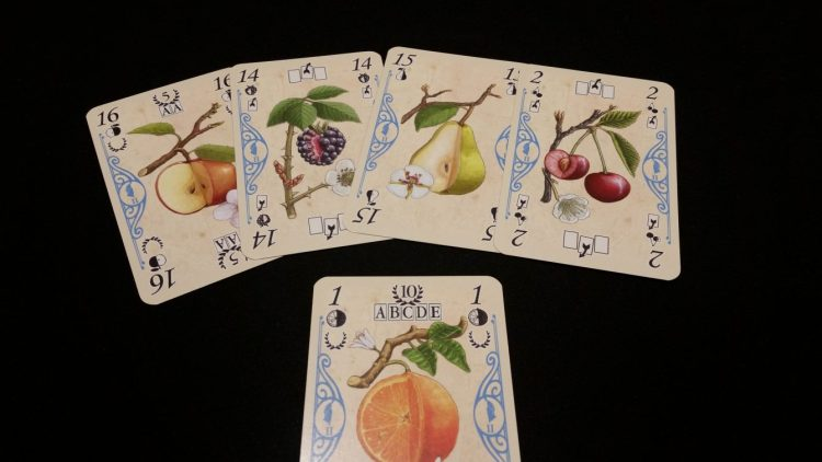 In order to score the Fruit Mix on the bottom card (worth 10 points), you will need 5 unique fruit from your tableau. The fruit mix card itself can be one of those cards.
