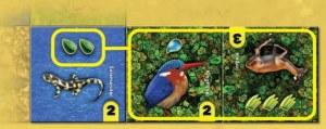 Habitats example