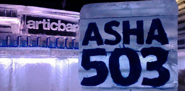 Nokia Asha 503 (5)
