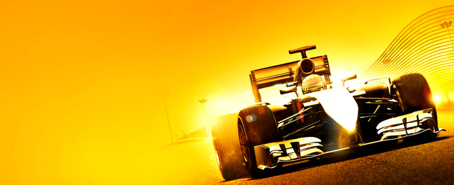 F1 2014 (1)