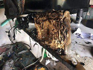 wii quemada (2)
