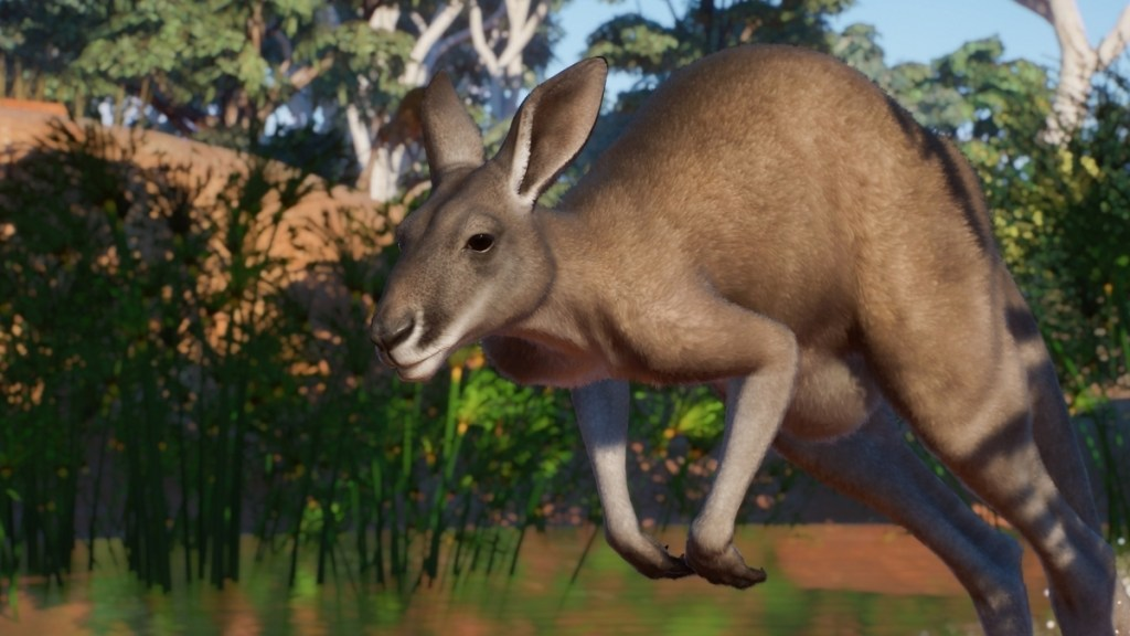 Planet Zoo is off to Australia next week in its latest paid DLC • Eurogamer.net