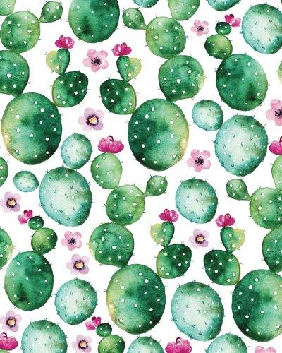 Succulent cacti bullet journal cover