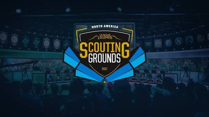 amature league scouting ground