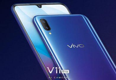 Vivo V11 price in Nepal