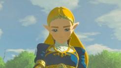 The Legend of Zelda Breath of the Wild (13)