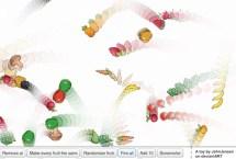 Fruit Circle Physics