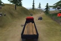 Truck Driver Crazy Road 1