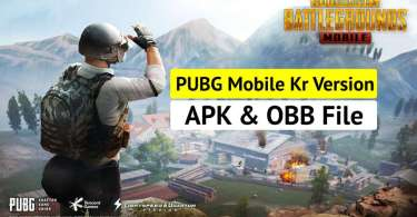 PUBG Korean Version Apk and OBB