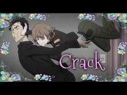 Steinsgate Crack