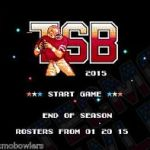 tecmo super bowl 2015
