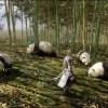『真・三國無双8』街の施設や狩りなど戦闘以外の様々な要素を紹介するプレイムービーが公開!