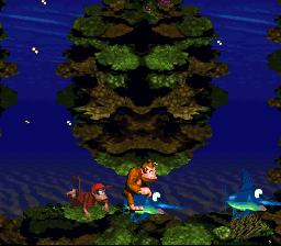Donkey Kong Country_00019