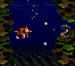 Donkey Kong Country_00077