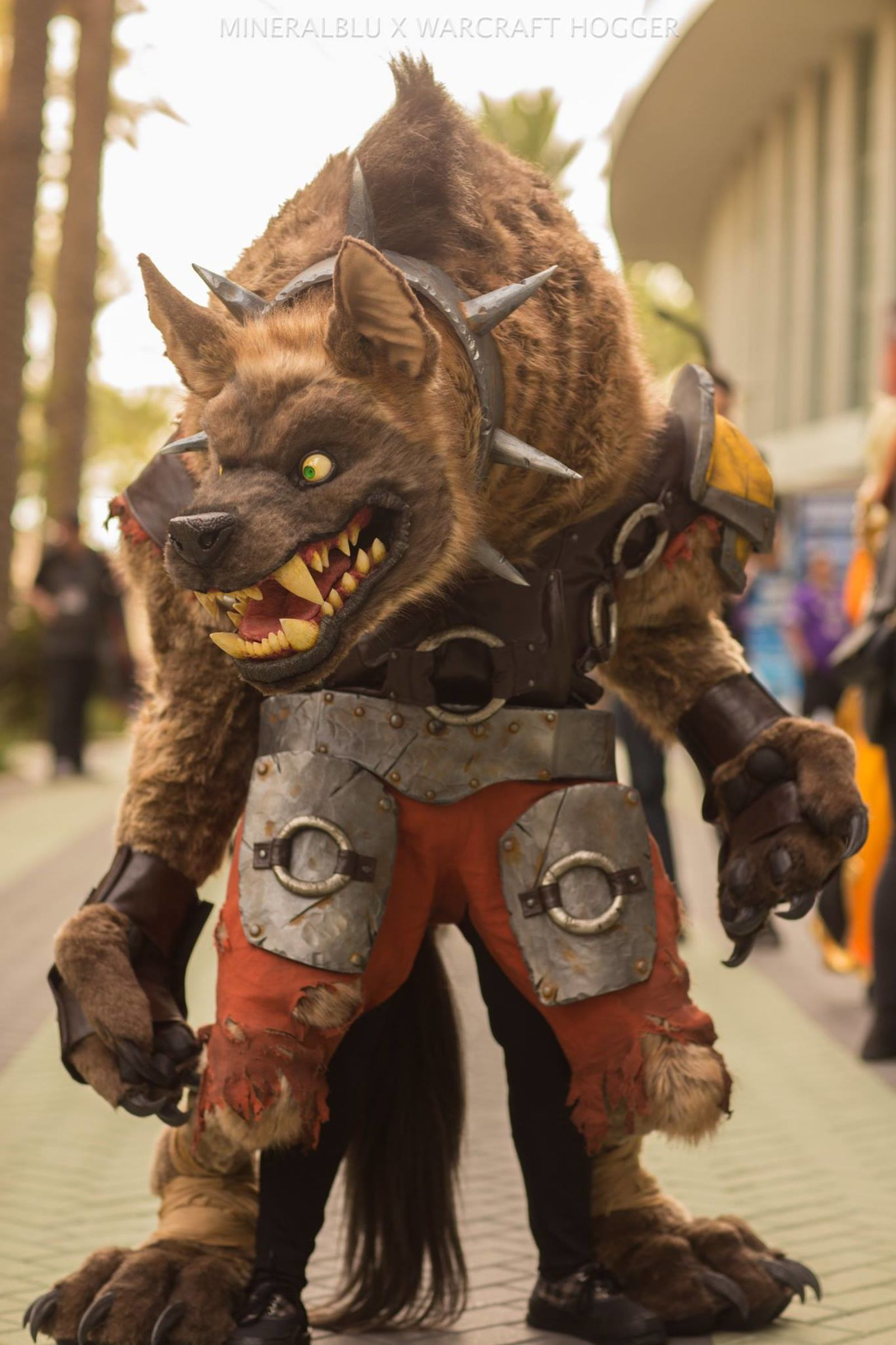 Best Of Cosplay From Blizzcon 2017 Gaming Central