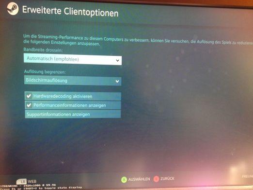 Einstellungen. (Foto: GamingGadgets.de / Screenshot)