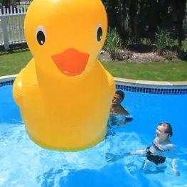 Aufblasbares Ente. (Foto: PerpetualKid)