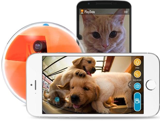 Gesteuert wird via App. (Foto: PlayDate)