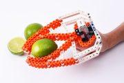 bionicToys: Flexibler als LEGO! Kreatives Konstruktionsspielzeug für Groß und Klein