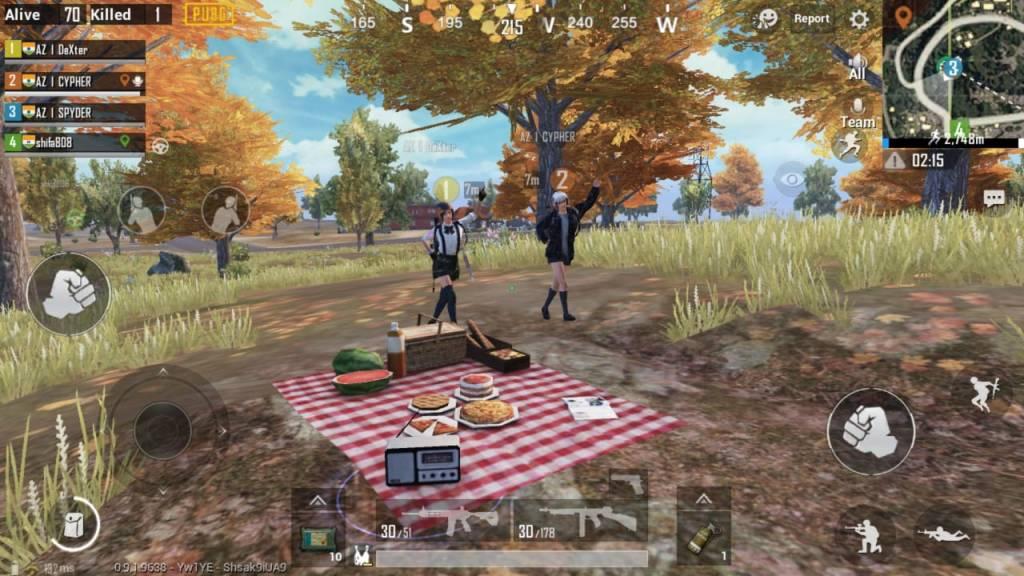 Zharki picnic garden, picnic spots in PUBG Mobile