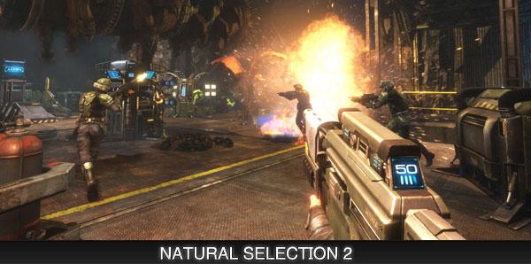 natural-selection-2