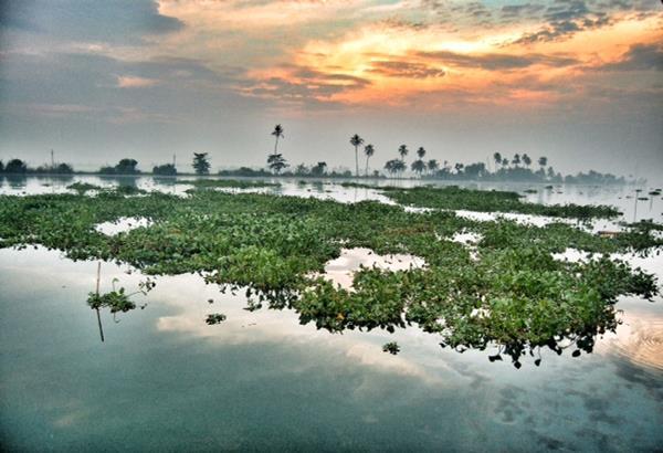Kerala, Hidden Gem.