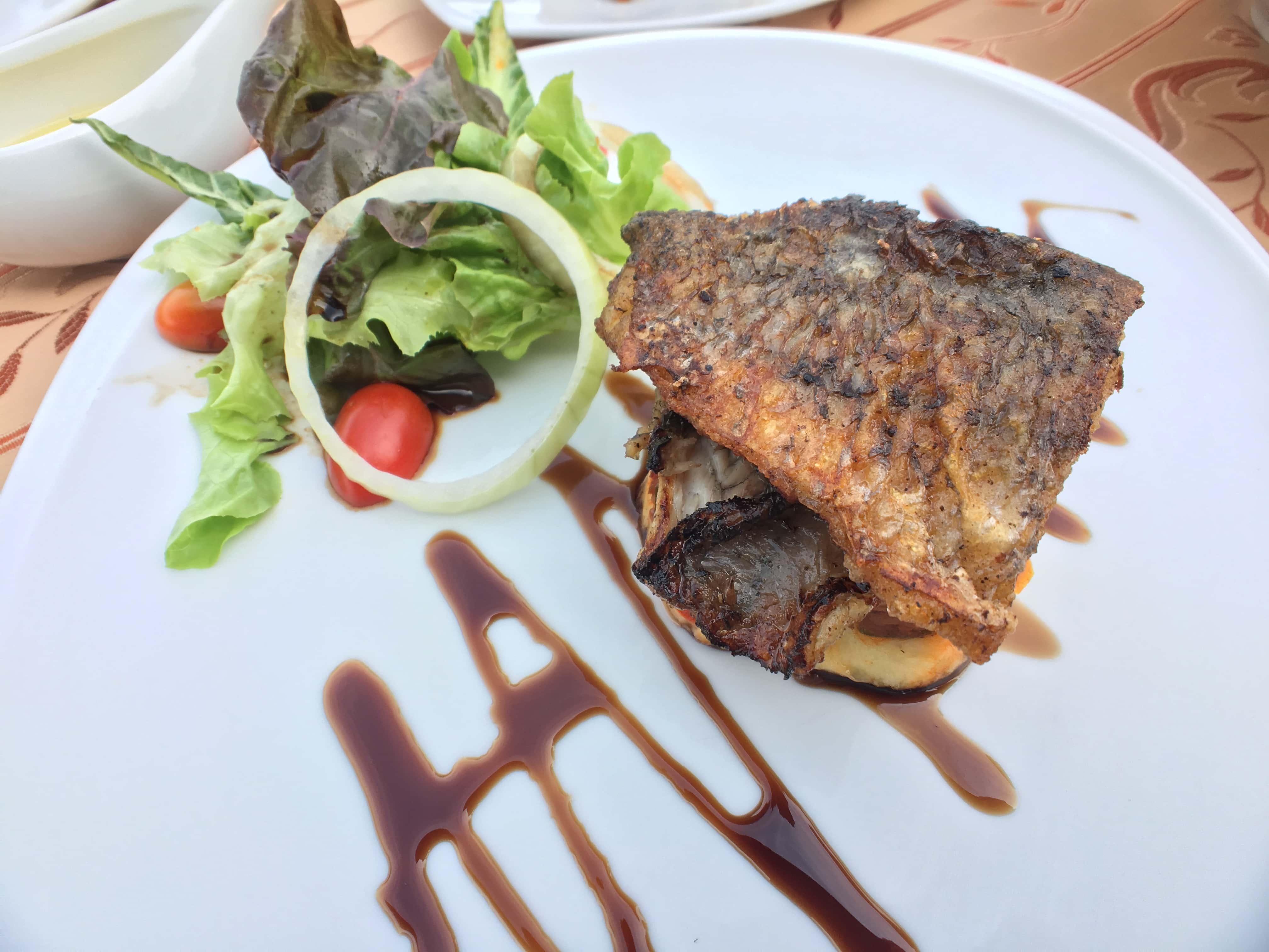 Fish and salad.