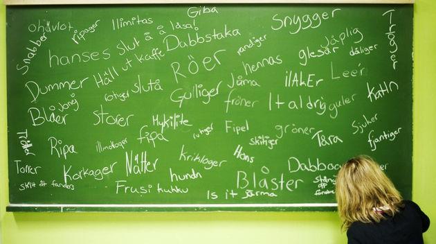 Bildresultat för Nya Svenska ord
