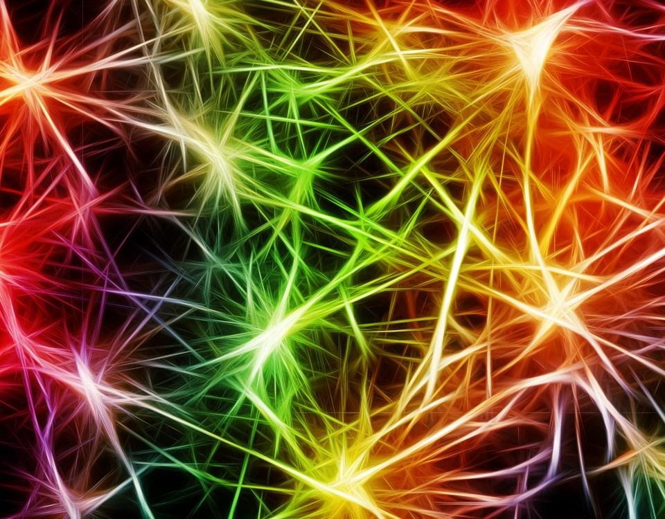 Resultado de imagen de El hipocampo agradece el ejercicio y fabrica nuevas neuronas