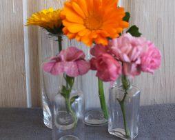 Äldre små flaskor i klarglas | Set med 4