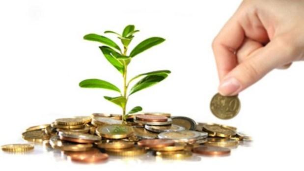 Una mano depositando una moneda en un monto de monedas con un brote de planta en medio