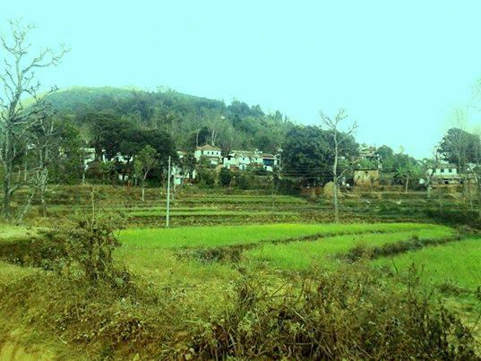 खानीगाउँमा बालचतुर्दशी मेला-कृषि प्रर्दशनी देखी निःशुल्क बैंक खाता खोल्र्ने व्यवस्था