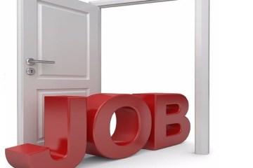 Chômage études jeunesse gandal