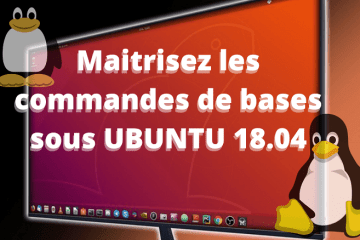 maitriser les commandes ubuntu 20.04