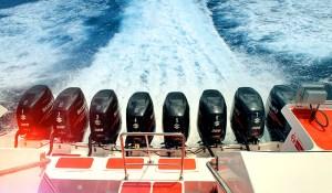 mesin boat marina srikandi