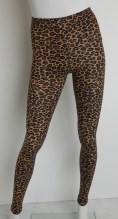 836 cheetah
