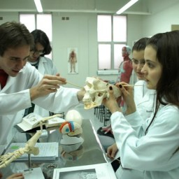 Governo Federal autoriza abertura de 11 novos cursos de medicina no país