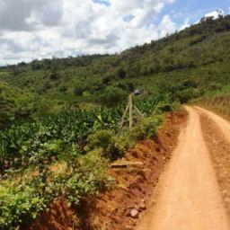 """Serviço de recuperação das estradas vicinais de Gandu avança para as regiões do """"Caborongo"""" e Jericó."""