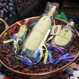Ilhéus: Agrônomo lança a cachaça de cacau durante o Festival do Chocolate