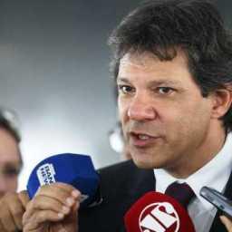 Haddad: Bolsonaro não vai a debates para não esclarecer fake news