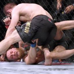 Khabib provoca briga generalizada e ofusca brilho do UFC 229