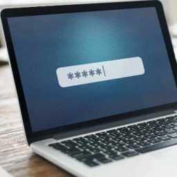 61% dos brasileiros repetem a senha em serviços digitais diferentes