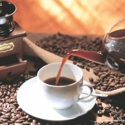 Café da agricultura familiar baiana se destaca mundialmente