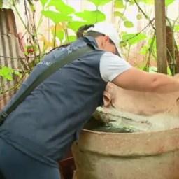 MP aponta déficit de agentes de endemias e alta infestação de mosquito da dengue