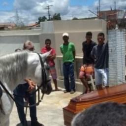 Cavalo acompanha sepultamento do seu dono em Jaguaqara e emociona familiares