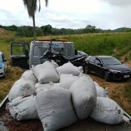 PM localiza carga de cacau roubada por quadrilha em Itabuna