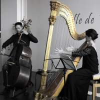 Les riches heures d'un duo harpe-contrebasse