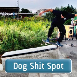 Fhain-Dog_Shit_Spot