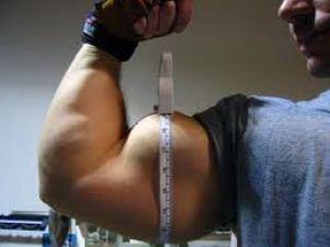 registre-seu-progresso-na-musculacao
